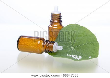 Two Bottles With Homeopathy Globules And Green Leaf