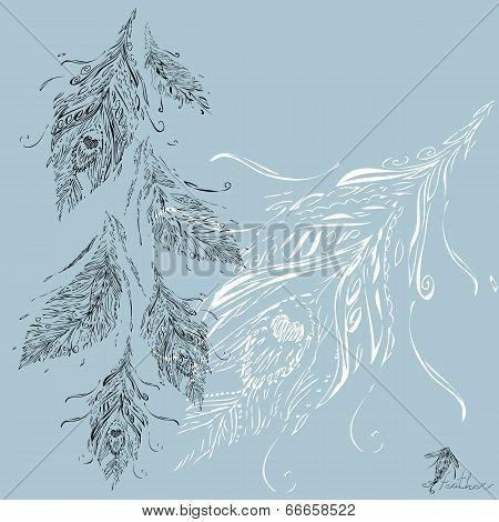 Bundle feathers. Vector illustration