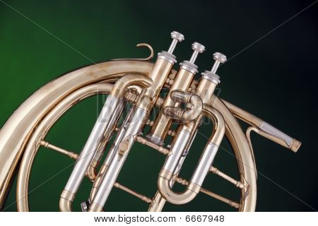 French Horn Peckhorn Isolated On Green