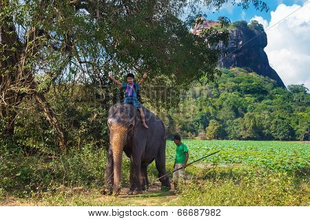 SIGIRIYA, SRI LANKA - 28 FEBRUARY, 2014: Japanese tourist riding on the back of elephant and mahout standing at rear with rock of Sigiriya as backdrop. Sigiriya is UNESCO listed World Heritage Site.