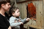 picture of terrarium  - Mother and her son watching the insect in terrarium at zoo - JPG