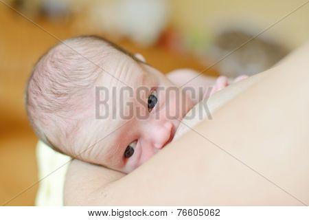 First Breastfeeding