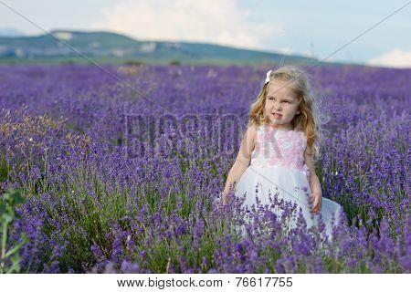 Toddler Girl   In Lavender Field