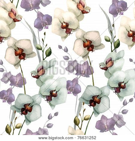 Beautiful orchid flower5