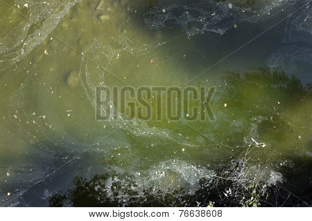 Water Pollution, Top View