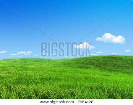 Green Meadow Template