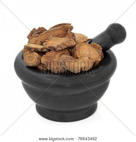 Chinese rhubarb herb used in chinese herbal medicine in a marble mortar with pestle over white background. Da huang.