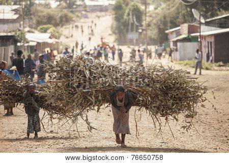 OROMIA, ETHIOPIA: NOVEMBER 7, 2014- Unidentified woman and child carry heavy loads of branches in Oromia, Ethiopia