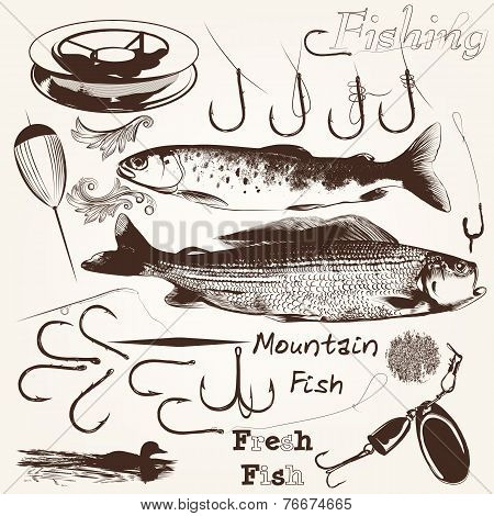 Collection Of Vector Hand Drawn Fishes And Hooks For Fishing Season Design