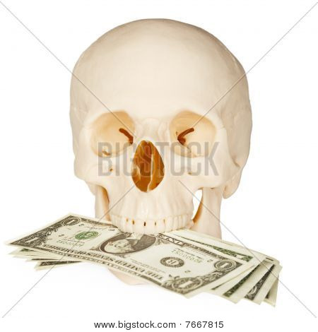 Skull Devours Money, Isolated On White