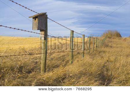 Bird House on the Prairie