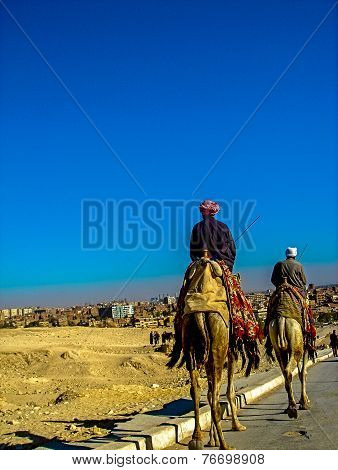 Camel Riders in Giza, Cairo, Egypt