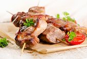 picture of kebab  - Grilled Kebab served with fresh vegetables  - JPG
