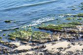 picture of tide  - Low tide in Santa Barbara - JPG