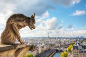 picture of notre dame  - Paris aerial view with Chimera of Notre Dame de Paris - JPG