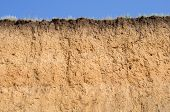 image of loam  - Layered cut of soil - JPG