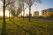 pic of highrises  - Highrise along a river at sunset in autumn - JPG