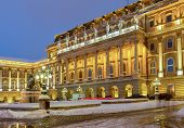 pic of royal palace  - Royal Palace in Budapest at blue night - JPG