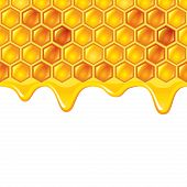 picture of honeycomb  - Honeycombs with honey photo realistic vector background - JPG