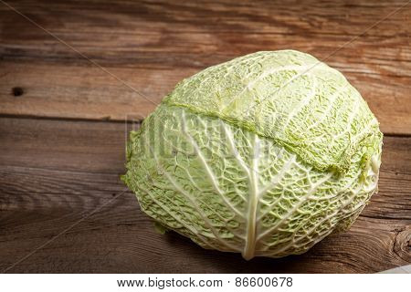 The Head Of Cabbage.