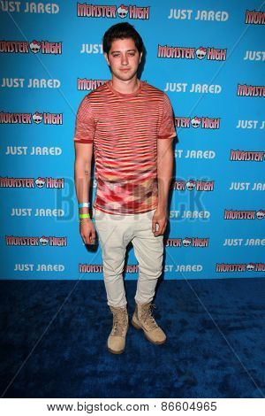 LOS ANGELES - MAR 26:  Chris Galya at the Just Jared's Throwback Thursday Party at the Moonlight Rollerway on March 26, 2015 in Glendale, CA