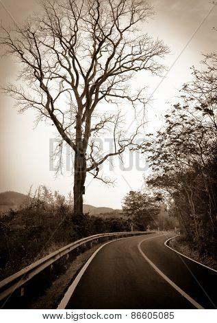 Road Landscape, Vintage Road