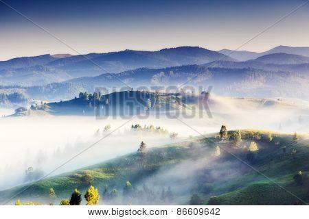 Fantastic foggy day and bright hills by sunlight. Dramatic morning scenery. Carpathian, Ukraine, Europe. Beauty world.