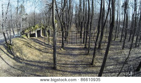 Old ashes near playground in forest at sunny spring day. Aerial view