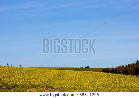 Agricultural Land In Spring