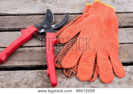 Pruner on garden gloves