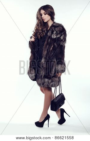 Woman With Dark Hair In Luxurious Fur Coat, Elegant Bag And Shoes