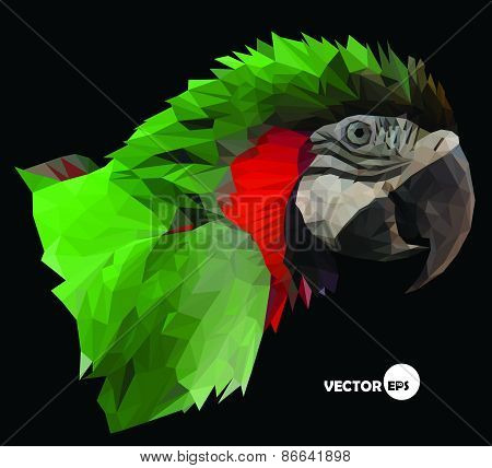 macaw parrot head on black background, abstract in low polygon