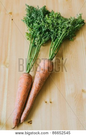 Fresh Organic Carrots With Leaves