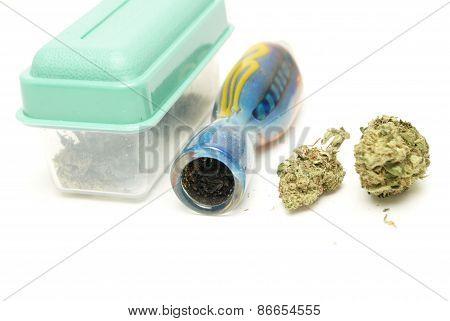 Marijuana Bud