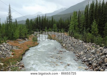 Mountain Stream In Banff National Park