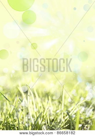 Blades of grass abstract spring background