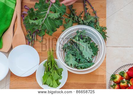 kale and herbs vegan organic vegetables