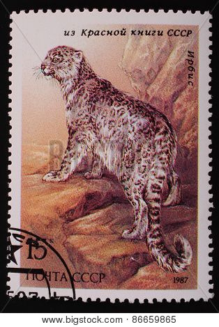 Moscow, Ussr- Circa 1987: Postage Stamp Printed Mail Ussr Shows Image Of The Animal From The Red Boo