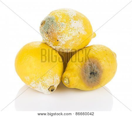 Heap of decayed lemon isolated on white background