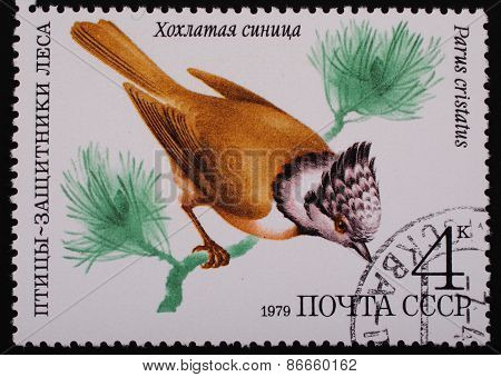 Moscow, Ussr- Circa 1979: Postage Stamp Printed Mail Ussr Shows Image Of A Bird Crested Tit Protecto