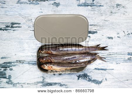 Mediterranean Seafood Background.