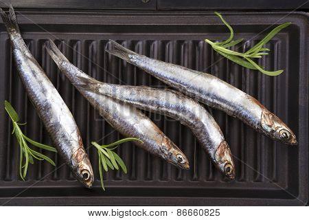 Fresh Fish On Grill.