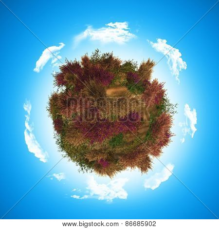 3D render of a globe with heather and fern