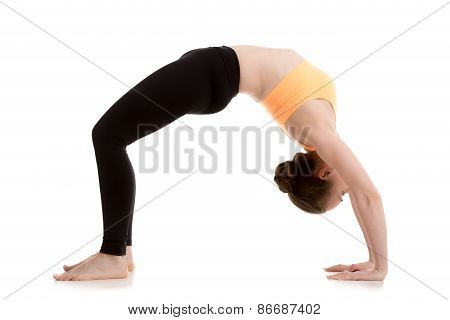 Beautiful Girl In Urdhva Dhanurasana Yoga Pose