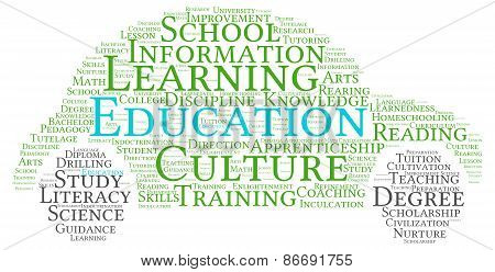 Car Shaped Education Word Cloud