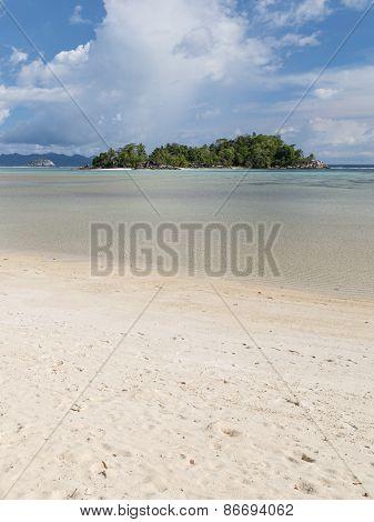 Vertical Seascape