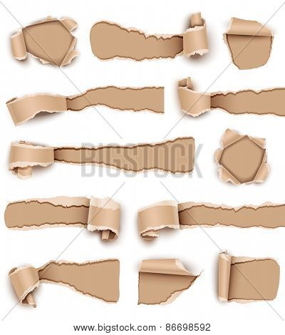 Collection torn paper isolated on white background. Vector illustration