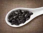 picture of spooning  - Black sunflower seeds in white porcelain spoon  - JPG