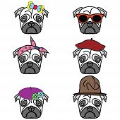image of pug  - Pugs set of icons  - JPG