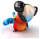 picture of parrots  - Fun parrot - JPG